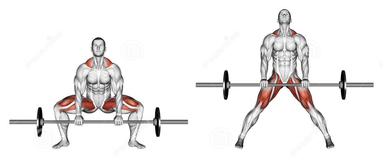 What Muscle Groups Do Deadlifts Work? - sumo deadlift muscle groups